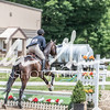 BRV Charity Horse show-8912