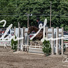 BRV Charity Horse show-9262