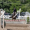 BRV Charity Horse show-9264