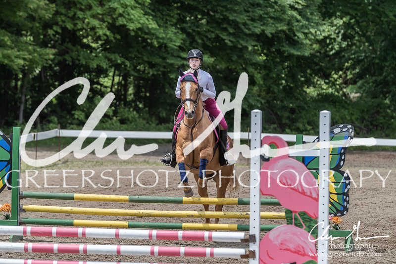 BRV Charity Horse show-8669