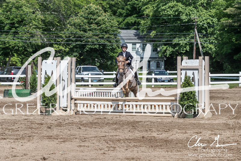 BRV Charity Horse show-9239