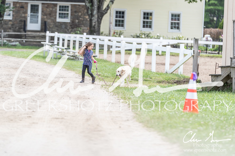 BRV Charity Horse show-9110