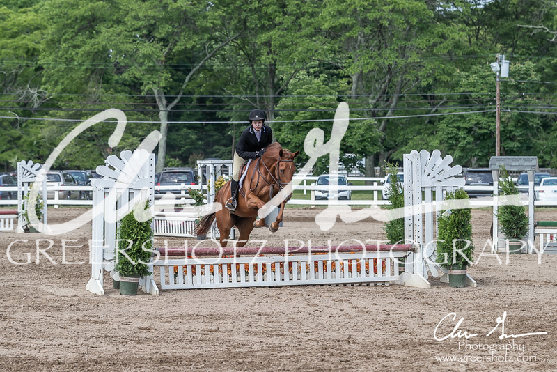 BRV Charity Horse show-9273