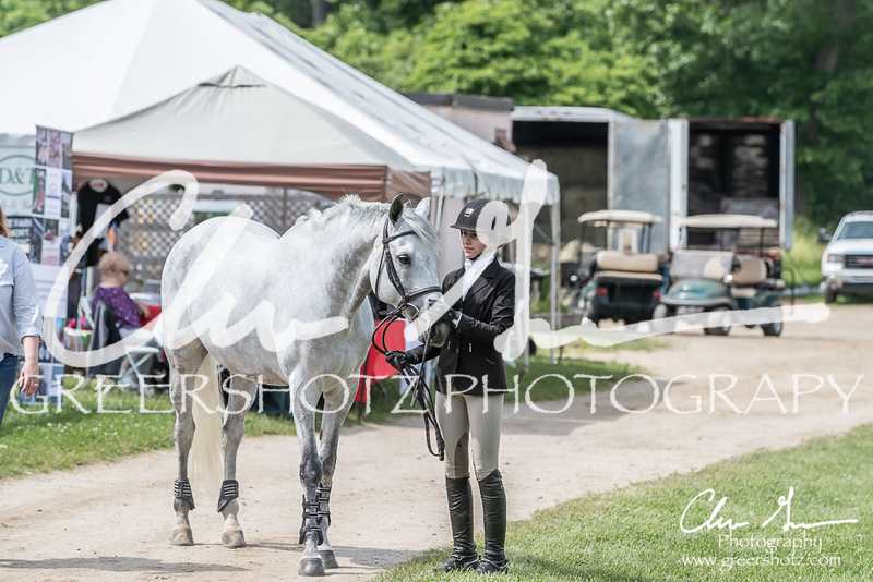 BRV Charity Horse show-9184