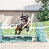 BRV Charity Horse show-8475