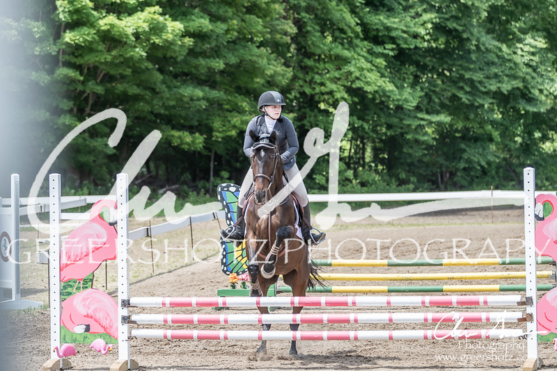 BRV Charity Horse show-8546