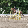 BRV Charity Horse show-8858