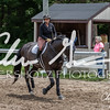 BRV Charity Horse show-8913