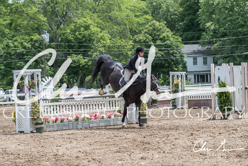 BRV Charity Horse show-8830