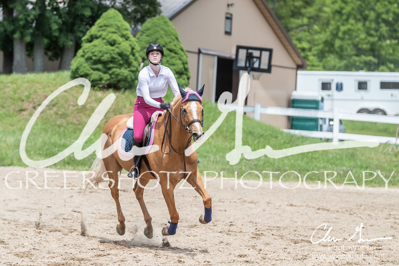 BRV Charity Horse show-8787