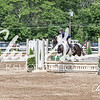 BRV Charity Horse show-9209