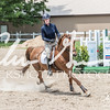 BRV Charity Horse show-8937