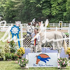 BRV Charity Horse show-9064