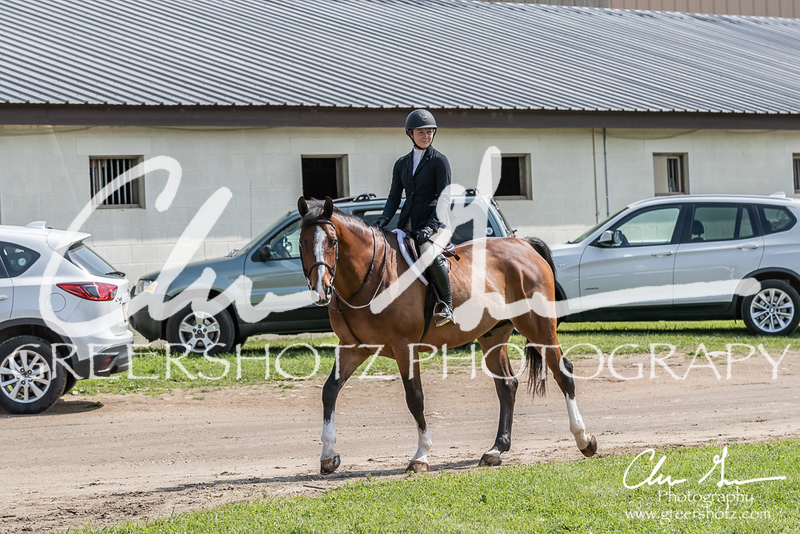BRV Charity Horse show-8303