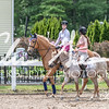 BRV Charity Horse show-8794
