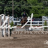 BRV Charity Horse show-9250