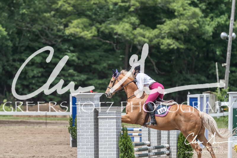 BRV Charity Horse show-8783
