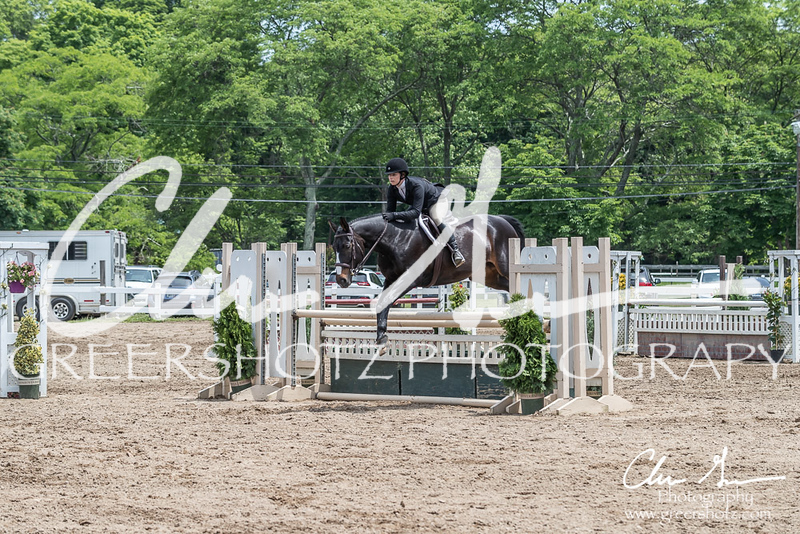 BRV Charity Horse show-8833