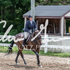BRV Charity Horse show-8874