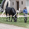 BRV Charity Horse show-8884