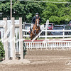 BRV Charity Horse show-9202