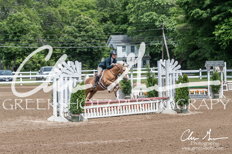 BRV Charity Horse show-9173