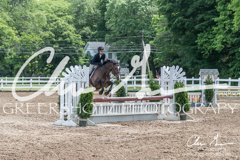 BRV Charity Horse show-8532