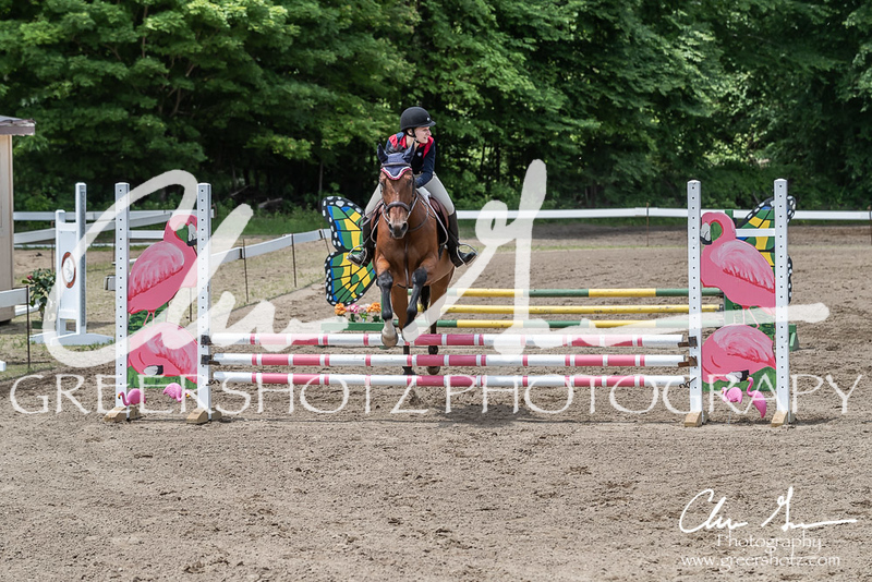 BRV Charity Horse show-8700