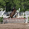 BRV Charity Horse show-9334