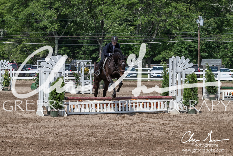 BRV Charity Horse show-9246