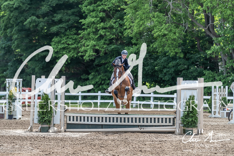 BRV Charity Horse show-8556