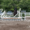 BRV Charity Horse show-9327