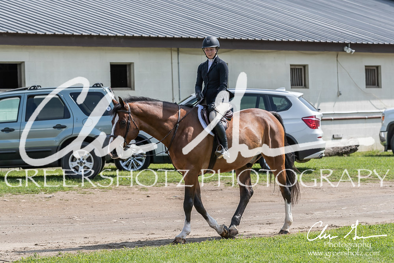 BRV Charity Horse show-8302