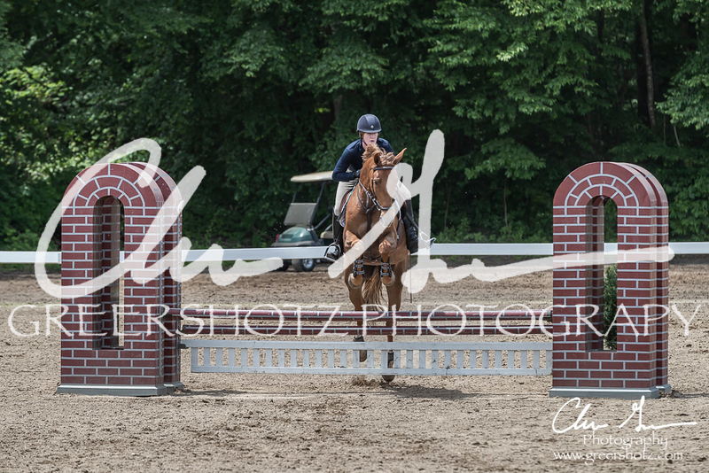 BRV Charity Horse show-8856
