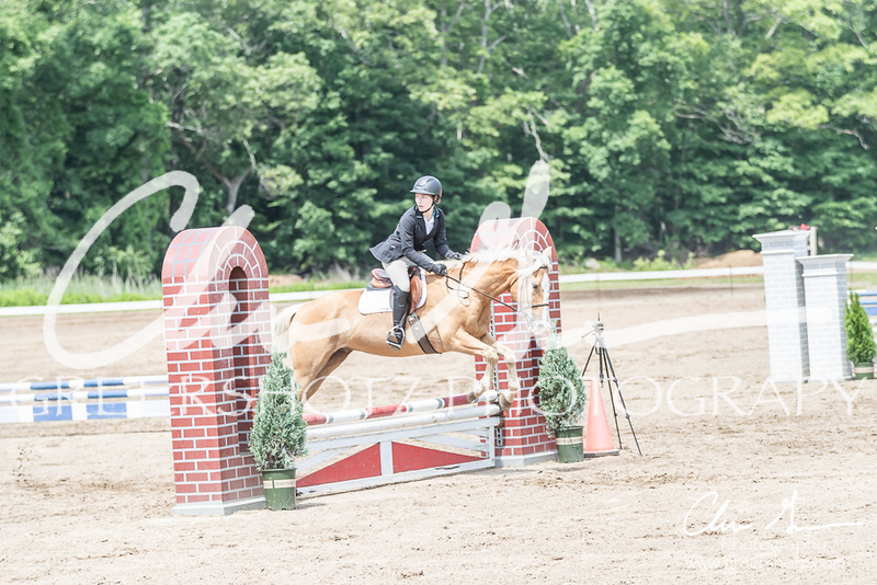 BRV Charity Horse show-8595