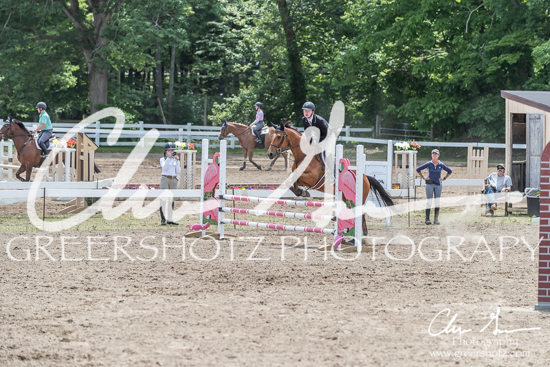 BRV Charity Horse show-8989