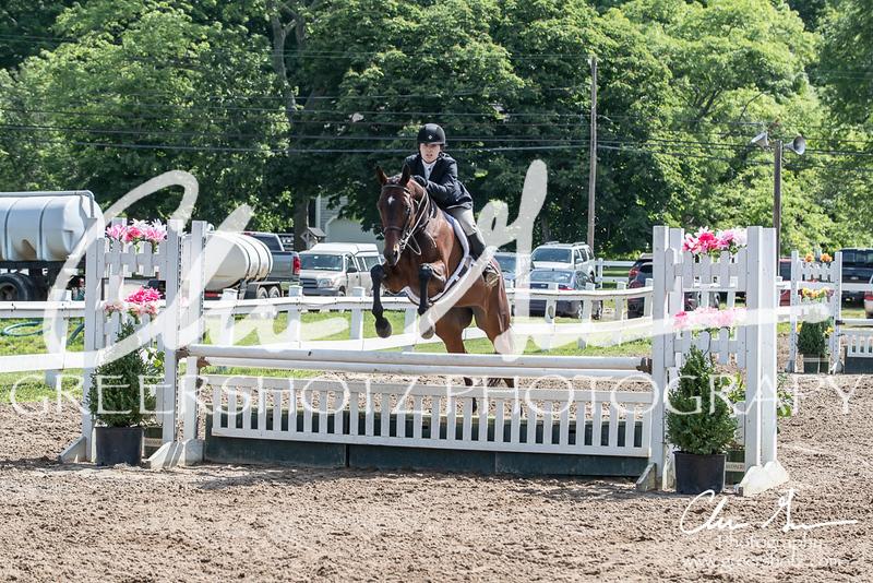 BRV Charity Horse Show - Saturday-9583