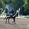 BRV Charity Horse Show - Saturday-9399
