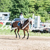 BRV Charity Horse Show - Saturday-9501