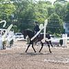 BRV Charity Horse Show - Saturday-9418