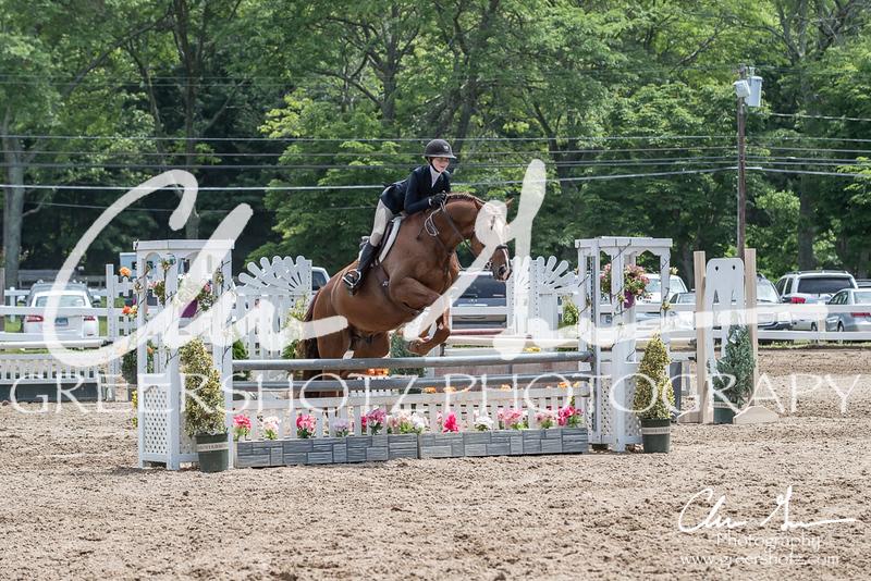 BRV Charity Horse Show - Saturday-9787