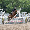 BRV Charity Horse Show - Saturday-9787