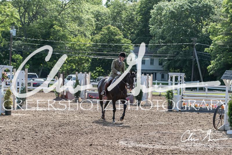 BRV Charity Horse Show - Saturday-9481