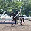 BRV Charity Horse Show - Saturday-9420