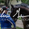 BRV Charity Horse Show - Saturday-9938