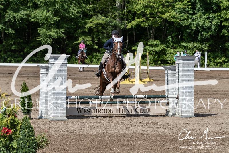 BRV Charity Horse Show - Saturday-9539