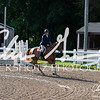 BRV Charity Horse Show - Saturday-9382