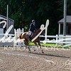 BRV Charity Horse Show - Saturday-9381
