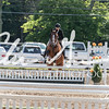 BRV Charity Horse Show - Saturday-9549