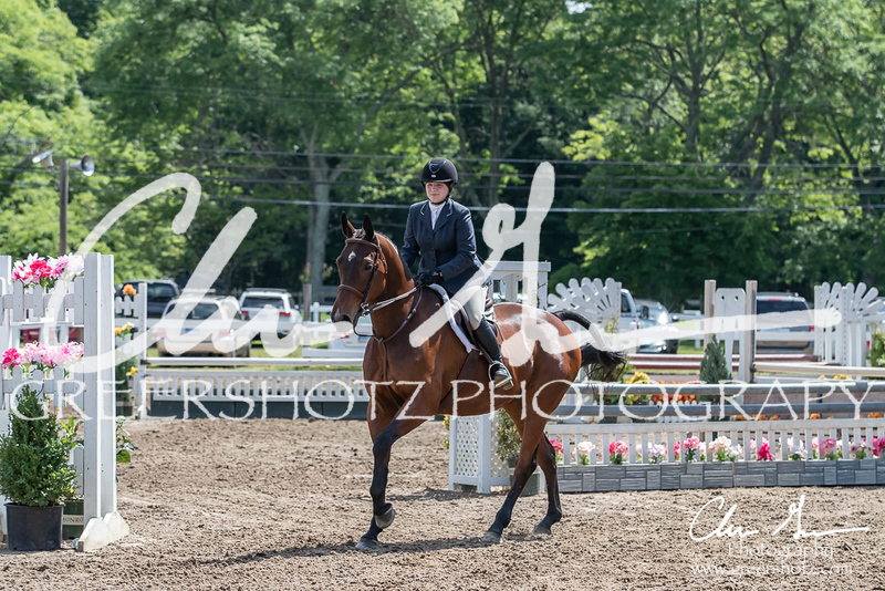 BRV Charity Horse Show - Saturday-9663